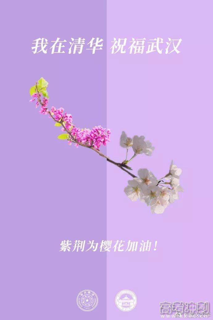 校花送祝福!春天总会到来,珞珈樱花会照常盛开