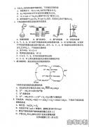 2021年八省联考湖南化学试题及答案
