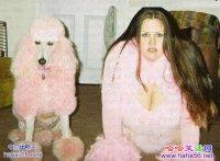 搞笑狗狗图片大全