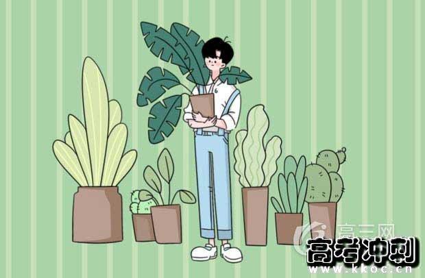 2020天津春季高考录取结果公布