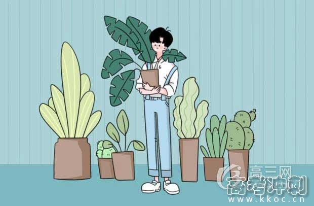2020中国美术学院本科文化课分数线公布