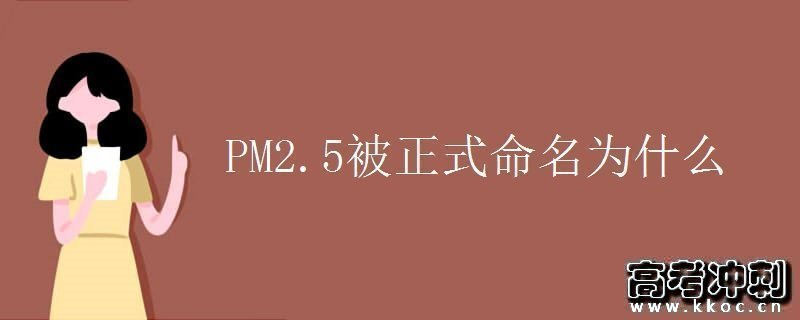 PM2.5被正式命名为什么