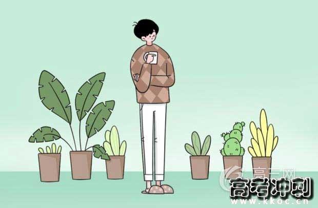 中国元旦节的由来和风俗